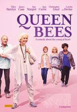 Movie Queen Bees: A Very Senior High (Never Too Late: At Last)