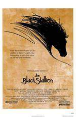 Movie The Black Stallion