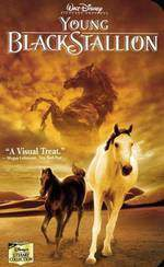 Movie The Young Black Stallion