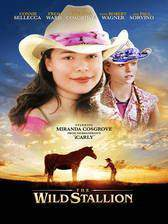 Movie The Wild Stallion
