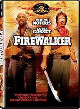 Movie Firewalker