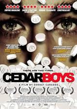 Movie Cedar Boys
