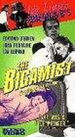 Movie The Bigamist