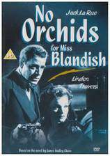 Movie No Orchids for Miss Blandish