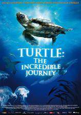 Movie Turtle: The Incredible Journey