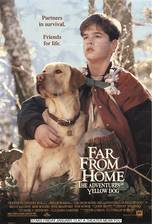 Movie Far from Home: The Adventures of Yellow Dog