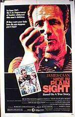 Movie Hide in Plain Sight