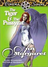 Movie The Tiger and the Pussycat