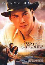 Movie A Walk in the Clouds