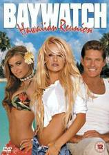 Movie Baywatch: Hawaiian Wedding