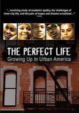 Movie Perfect Life