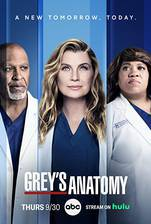 Movie Grey's Anatomy