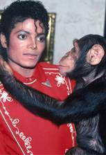 Movie Michael Jackson and Bubbles: The Untold Story