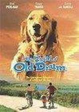 Movie The Trial of Old Drum