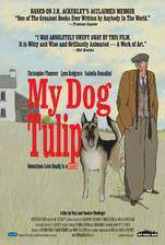 Movie My Dog Tulip