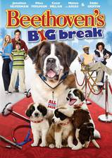 Movie Beethoven's Big Break
